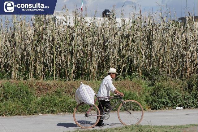 Campesinos de Tehuacán sobreexplotan pozos por falta de lluvias