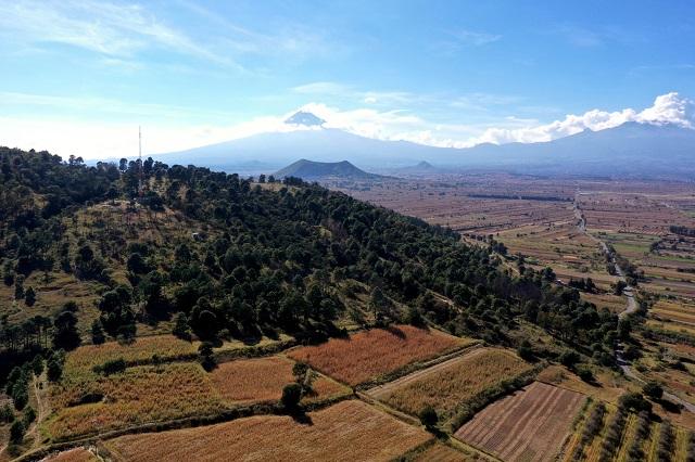 Emprenden Medio Ambiente y VW rehabilitación del Cerro Zapotecas