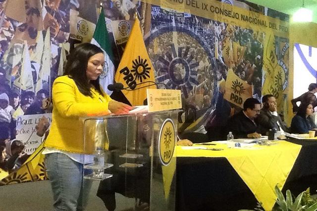El PRD elegirá candidatos en Consejo Nacional Electivo