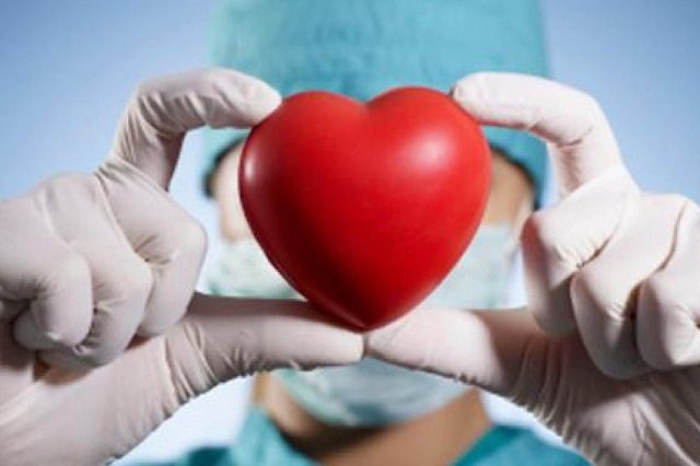 Falta incrementar cultura de donación de órganos en México