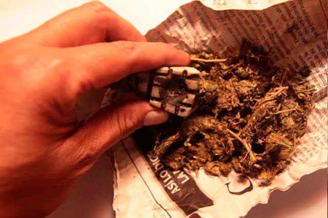 Pide senador del PRD elevar dosis permitida de mariguana