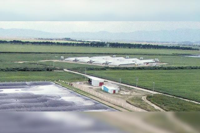 Carroll pone en operación granja de su proyecto de expansion 2015-2021
