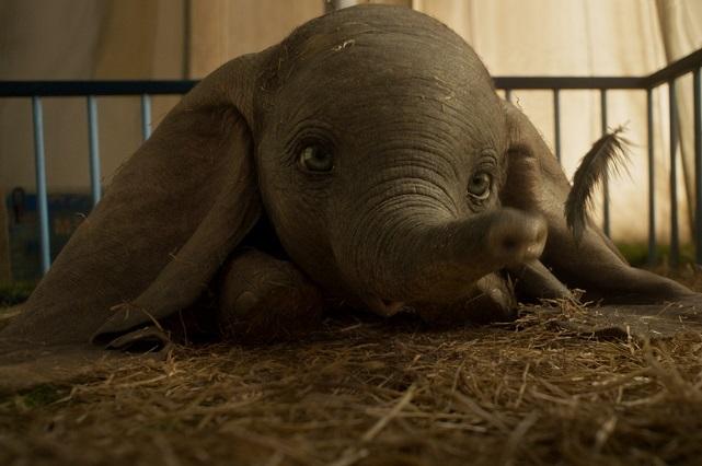 Nuevo tráiler de Dumbo muestra cómo aprendió a volar