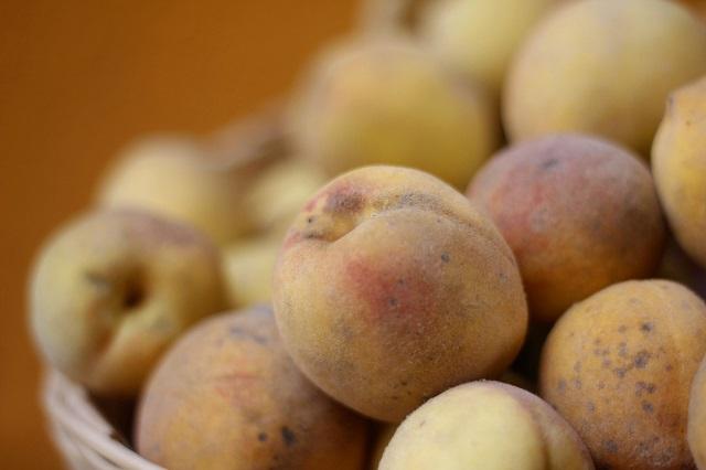 Cofepris alerta sobre presencia de salmonella en duraznos