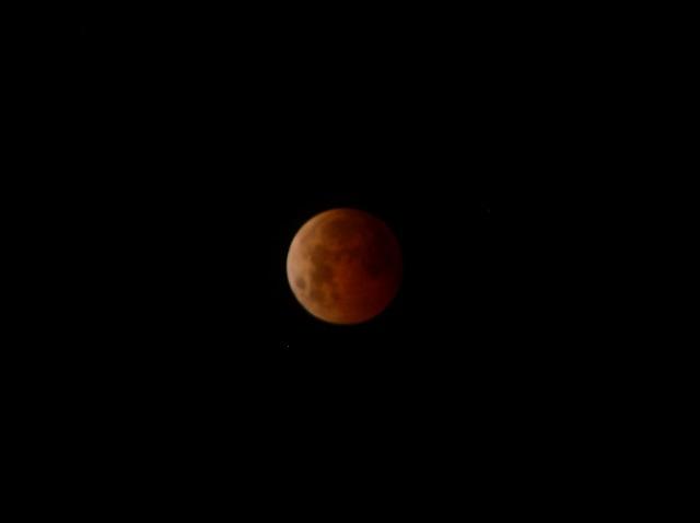 Lluvias de estrellas y eclipses, los eventos astronómicos de 2019