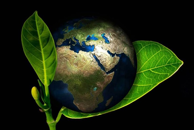 ¿Quiénes contribuyen más al efecto invernadero en México?