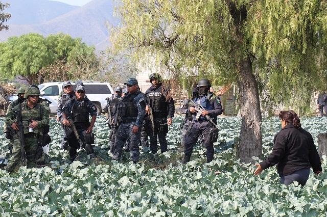 Palmarito muestra que militares no deben hacer función policial: AI