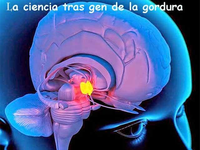 Ciencia en la UNAM descubre enzima importante