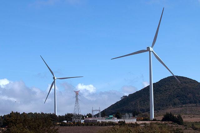 Autorizan otro parque eólico de Iberdrola en Cañada Morelos