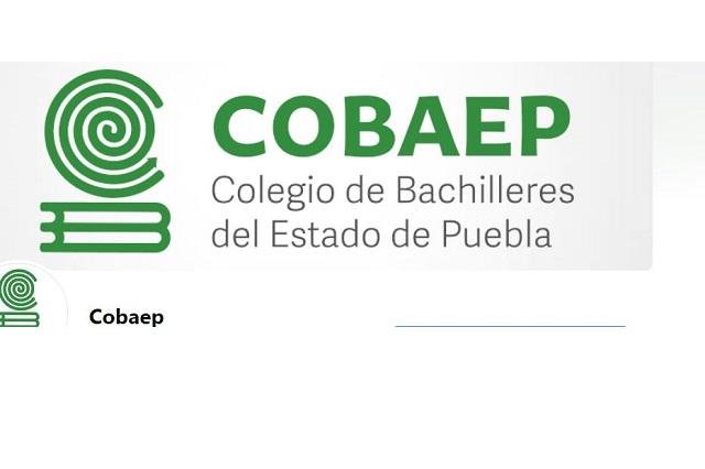 Inicia Cobaep clases virtuales el  próximo 7 de  septiembre
