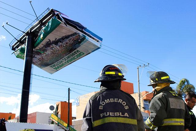Cayeron 28 árboles y 7 anuncios espectaculares en el municipio Puebla