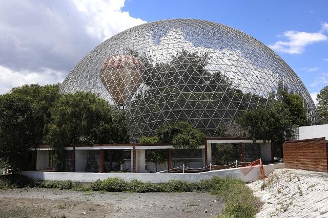Impugna Profepa fallo sobre ex responsable del Aviario de Puebla