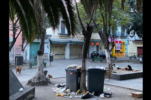 Piden que ambulantes paguen limpia en centro de Puebla
