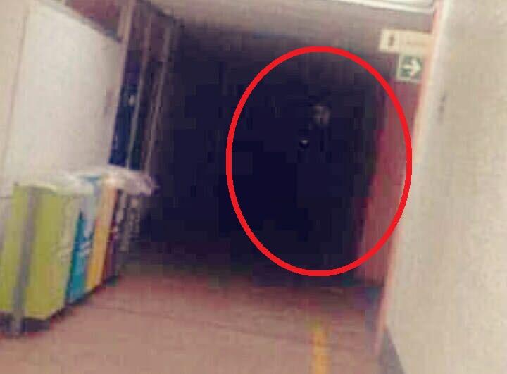 Foto: Captan a supuesto fantasma que se apareció en la UNAM
