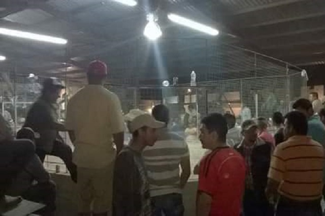 Clausuran pelea de gallos clandestina en Santiago Miahuatlán