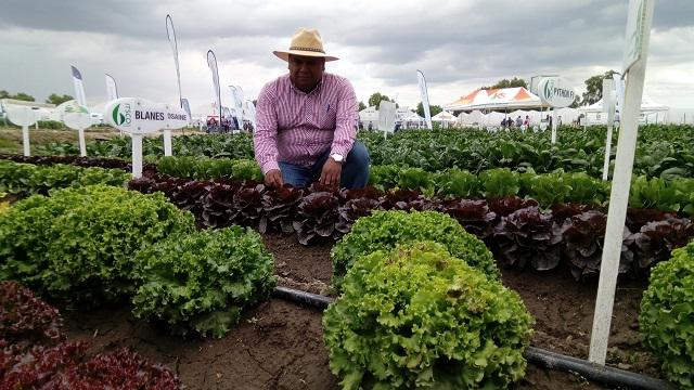 Piden especialistas para el agro 10% del presupuesto estatal