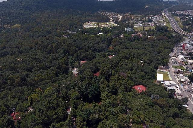 Piden en San Lázaro protección para el Parque Flor del Bosque