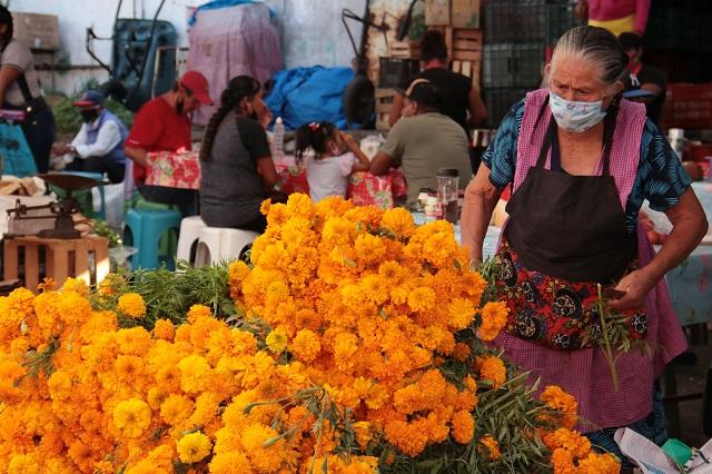 Aumenta precio de flor de muerto por pandemia en Tehuacán