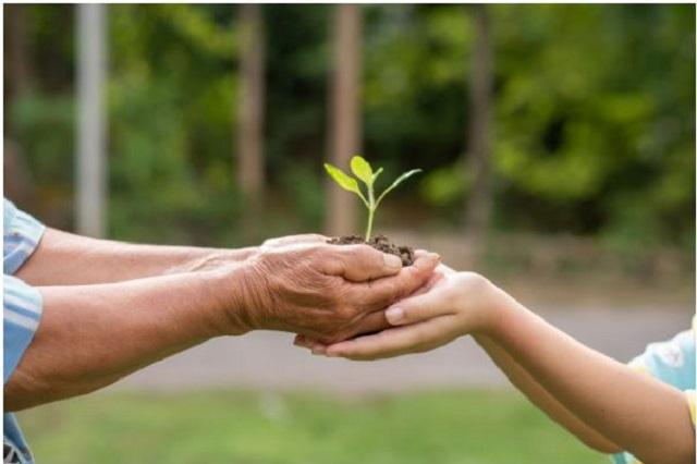 Es responsabilidad de todos el medio ambiente: Anáhuac Puebla