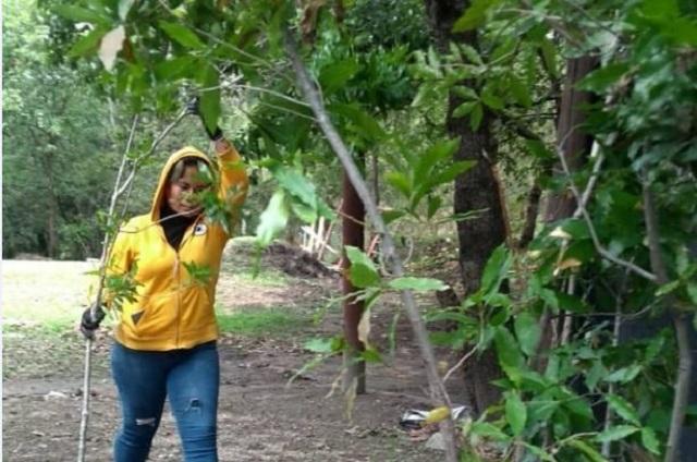 Haras invita a su campaña de reforestación y  talleres ambientales