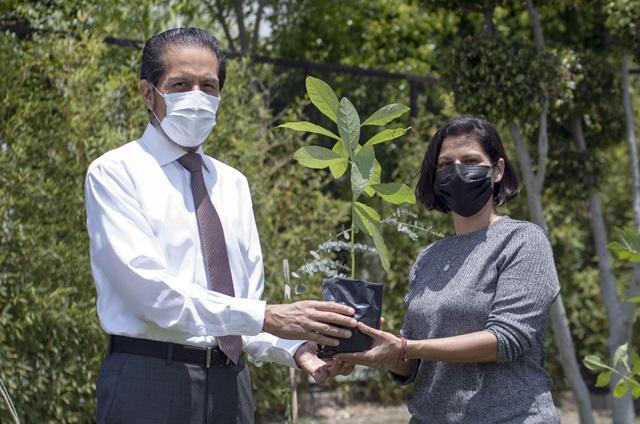Entrega Alfonso Esparza más de 800 especies con Adopta un árbol