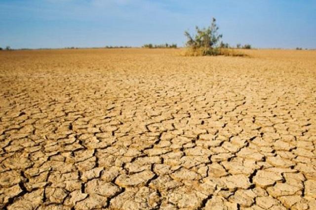 Con imágenes de satélite, NASA muestra grave sequía en México