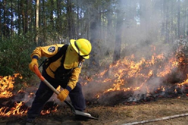 Incendios forestales dañan más de 2 mil hectáreas en Puebla