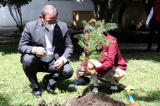 Pone en marcha SEP programa Regresa a la Escuela con un Árbol