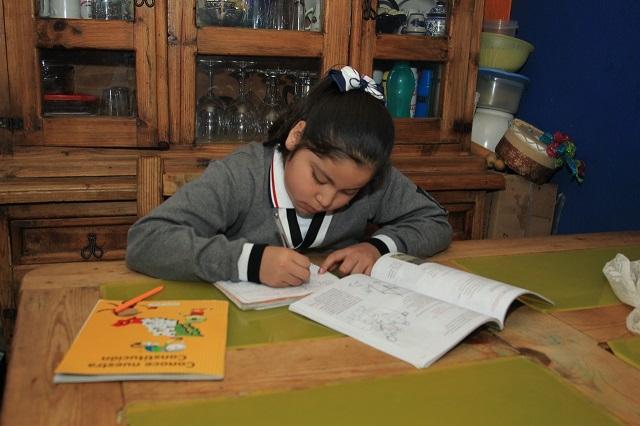 Regreso a clases a distancia es el 11 de enero en Puebla: SEP