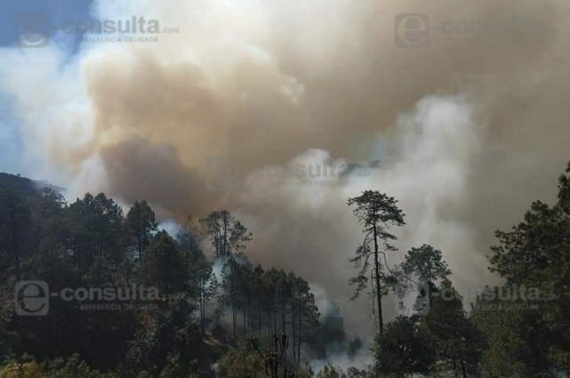 Desalojan a familias por incendio en comunidad de Zautla