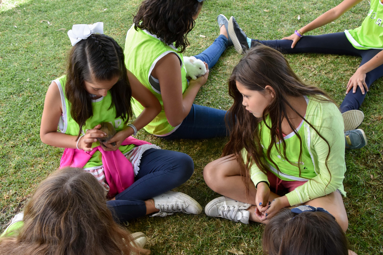 Curso de verano UDLAP:  diversión y aprendizaje al máximo