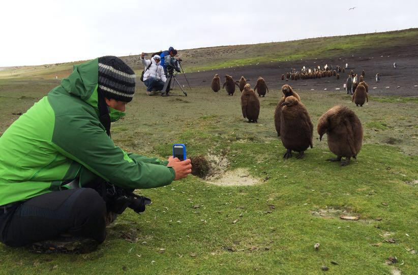 Egresado UDLAP realiza trabajo de campo en las Islas Falkland