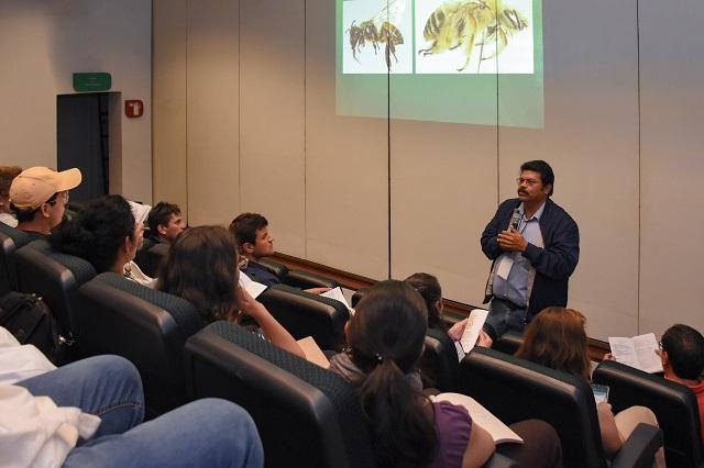 UDLAP es  sede de congreso para la preservación de las abejas