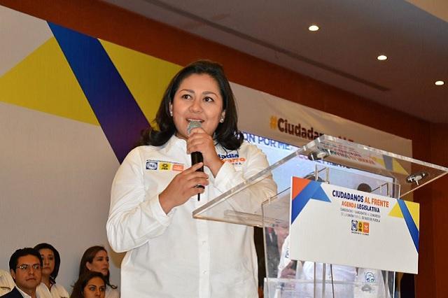 PGR debe investigar a Espinosa Torres, pide Navarro Acevedo en el Senado