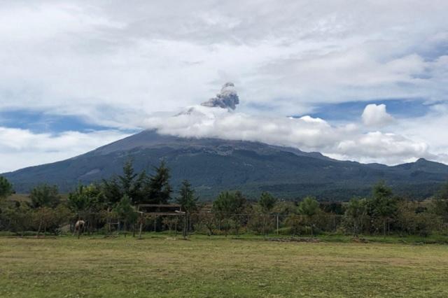 Mantiene baja actividad el volcán Popocatépetl: Protección Civil