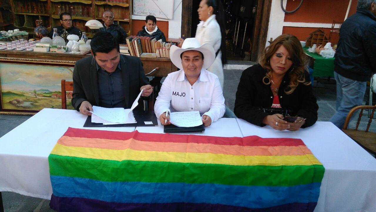 Comunidad LGBTTTI quiere sus propios candidatos en 2018