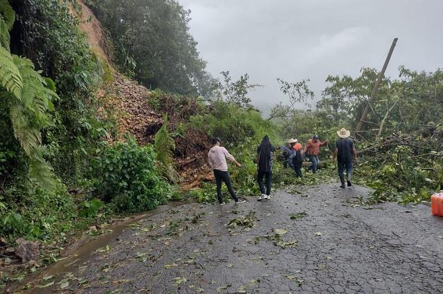 Grace deja sin luz a 37 municipios poblanos y caminos bloqueados
