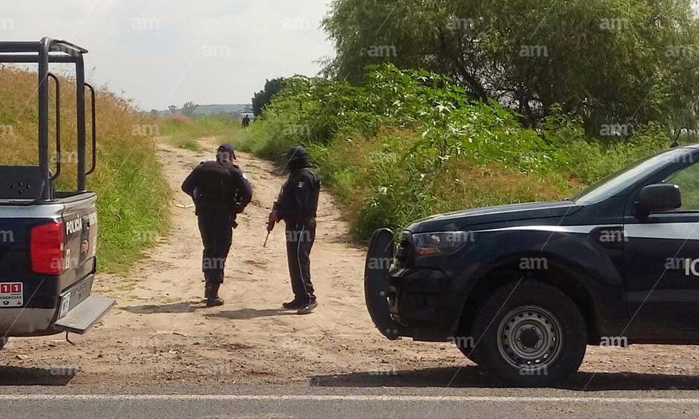 Encuentran tres cabezas humanas en Guanajuato