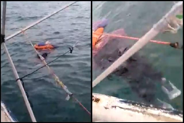 Encuentran flotando en el mar a mujer desaparecida hace 2 años
