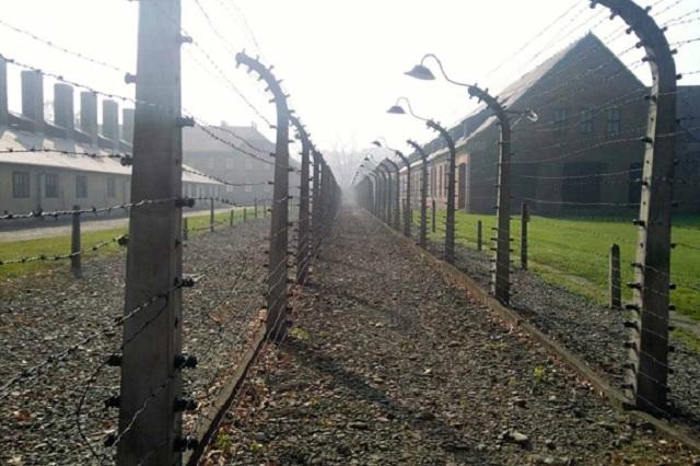 Hallan nuevos objetos escondidos por prisioneros en Auschwitz