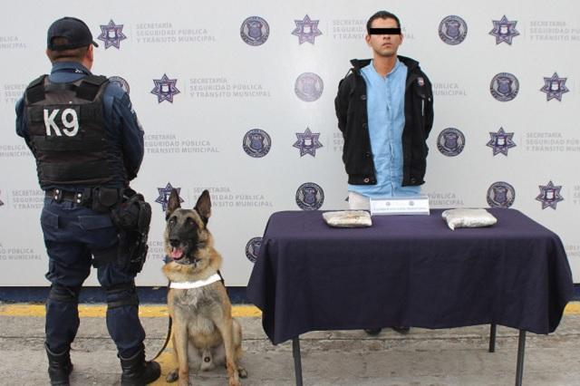 Atrapan en la CAPU a pasajero con dos kilos de heroína
