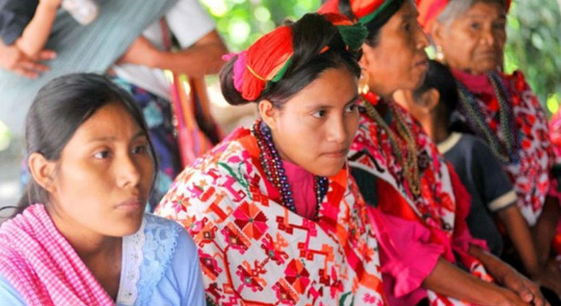 Extremamente Alistan proyectos productivos para grupos indígenas de la capital  UC47