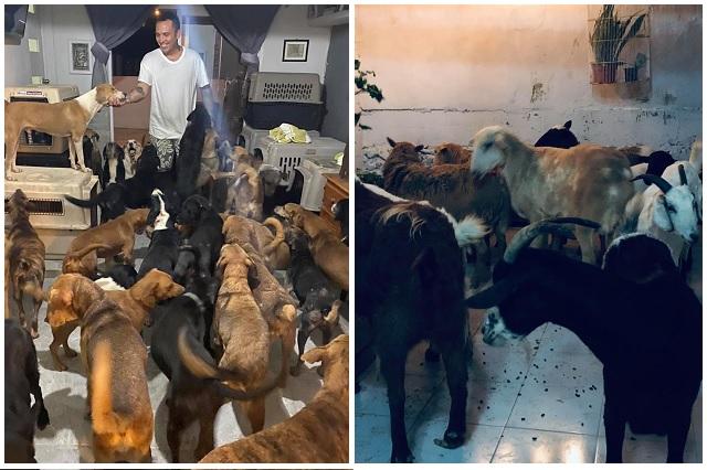 Joven de Q. Roo refugió a más de 300 animales por huracán Delta
