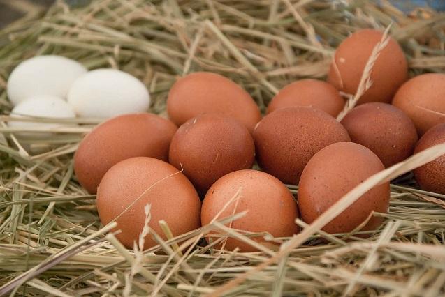 ¿Cuántos kilos de huevos promedio consumimos los mexicanos al año?