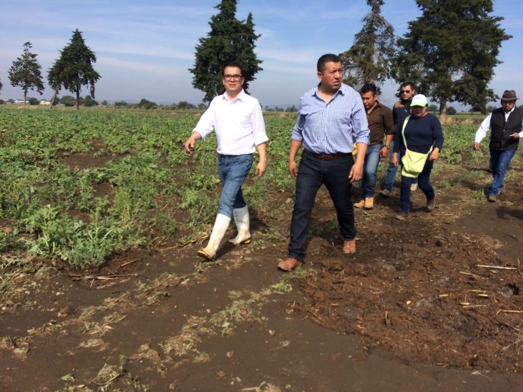 Dañó 200 hectáreas de cultivo y 59 cabezas ganado tromba en Esperanza