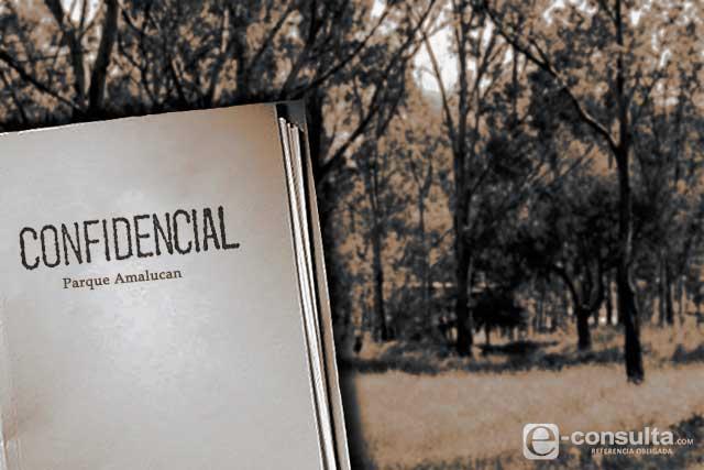 Confidenciales, límites y usos de predios en Parque de Amalucan