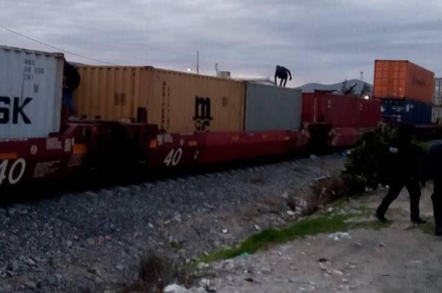 Delincuentes fracasan en intento de asalto a tren en Miahuatlán
