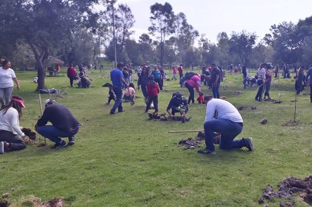 Agua de Puebla dona 3 mil 780 árboles a través de campaña