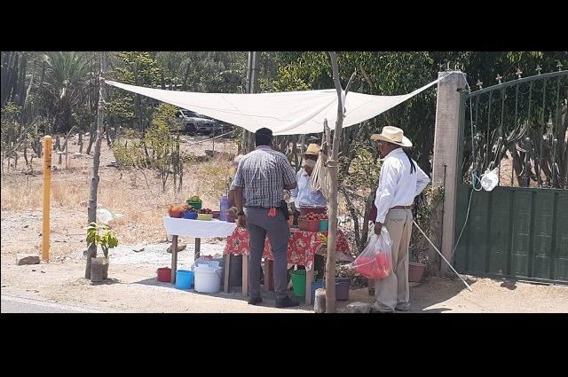 Comerciantes de frutas de temporada sufren discriminación por Covid 19