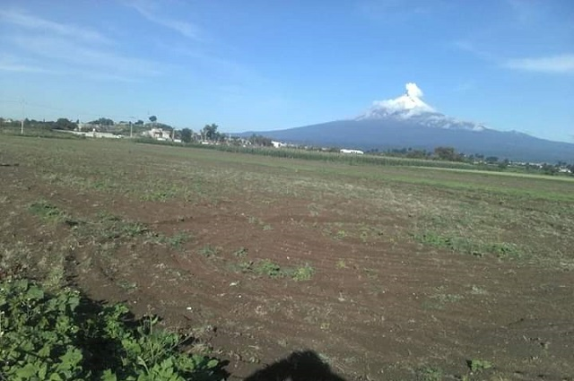 Temen presencia de Covid en agua de riego para hortalizas en Atlixco